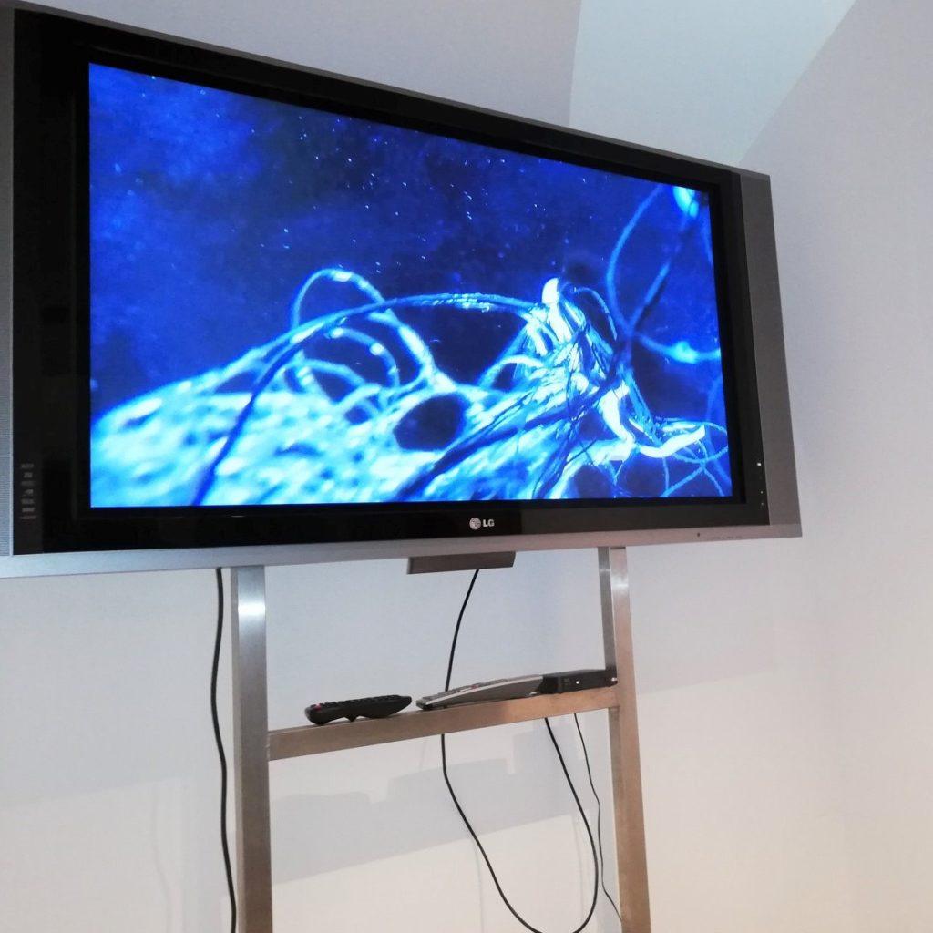 Barbara Sepp, Video, Museum Ballhaus (mit Helga Eiter, Grafik, Egmont Maier, Malerei)